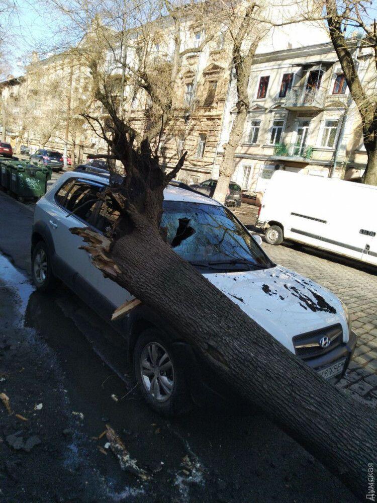 Наслідки урагану в Одесі