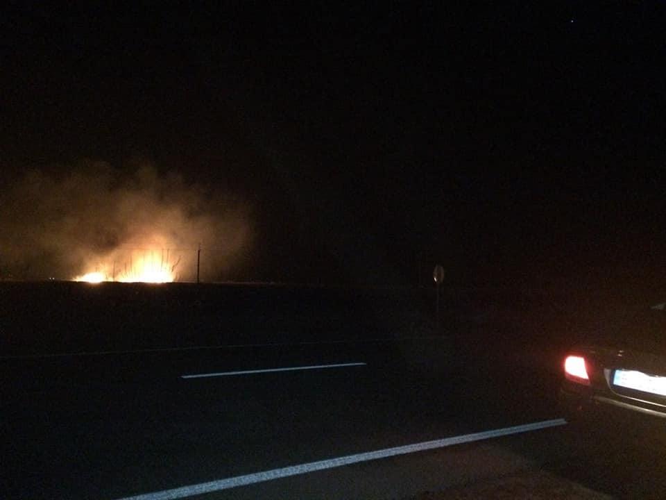 На Одесщине в заповеднике вспыхнул страшный пожар