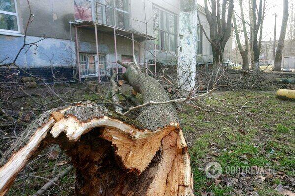 Последствия урагана в Одессе 24 февраля