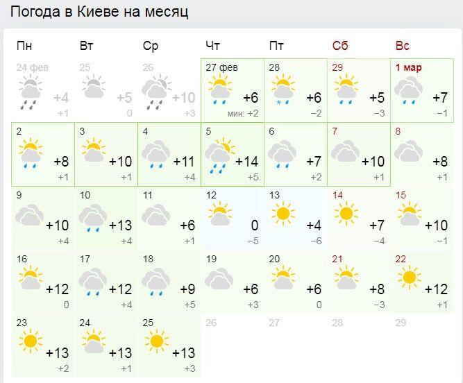 Весна-2020 прийде в Україну з дощами і травневою температурою: прогноз змінився