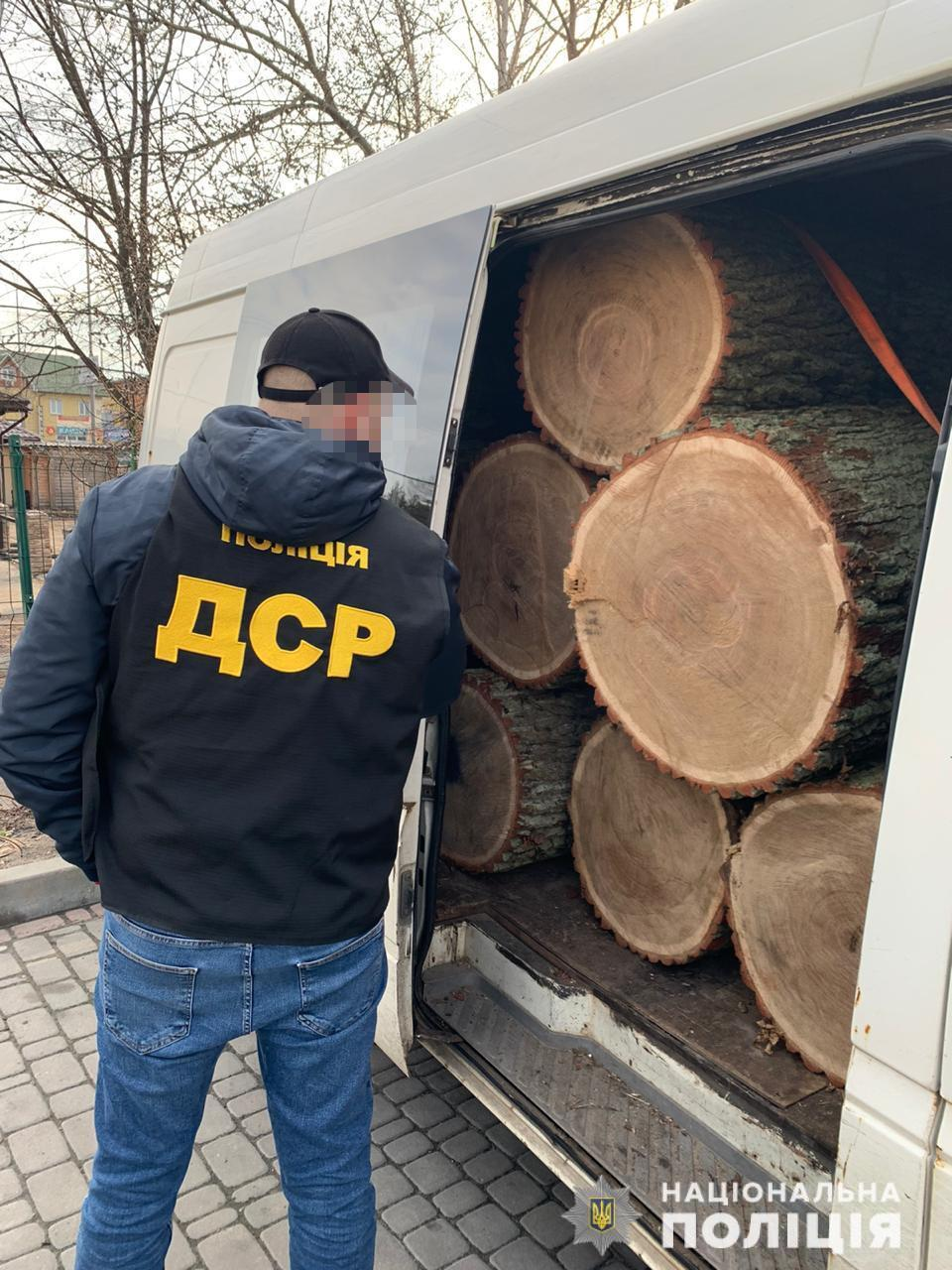 """У Києві затримали угрупування """"чорних"""" лісорубів"""