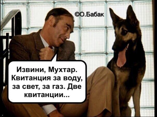 """Собаку за коммуналку, виклик повій і рішалово: топ-скандалів """"Слуги народу"""""""