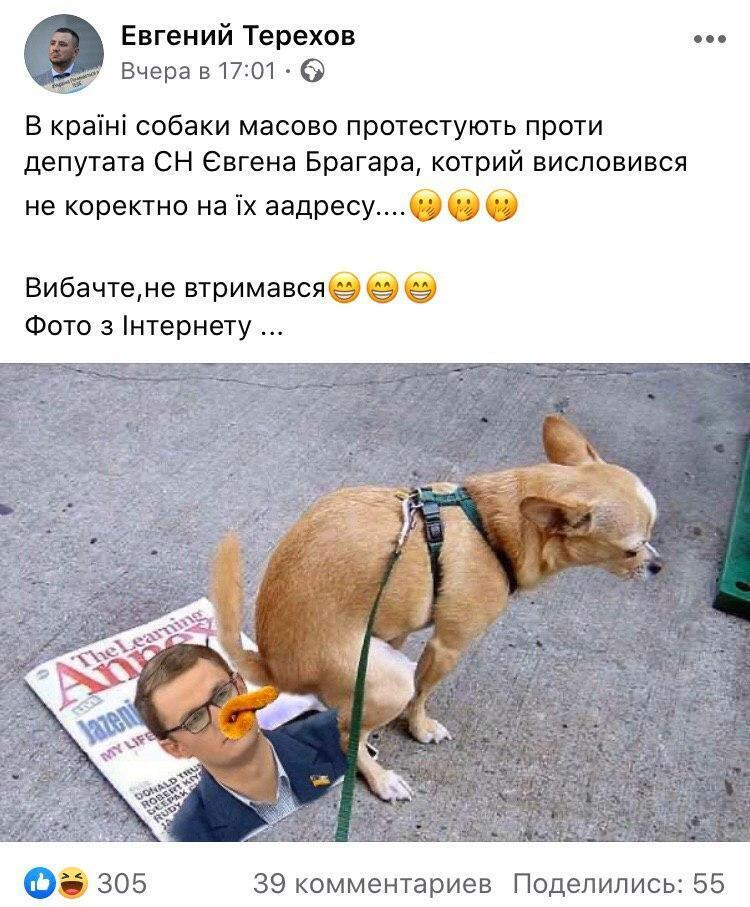 Протест собак