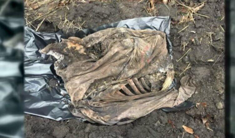 Вивіз у лісосмугу: на Черкащині чоловік вбив нареченого доньки. Відео