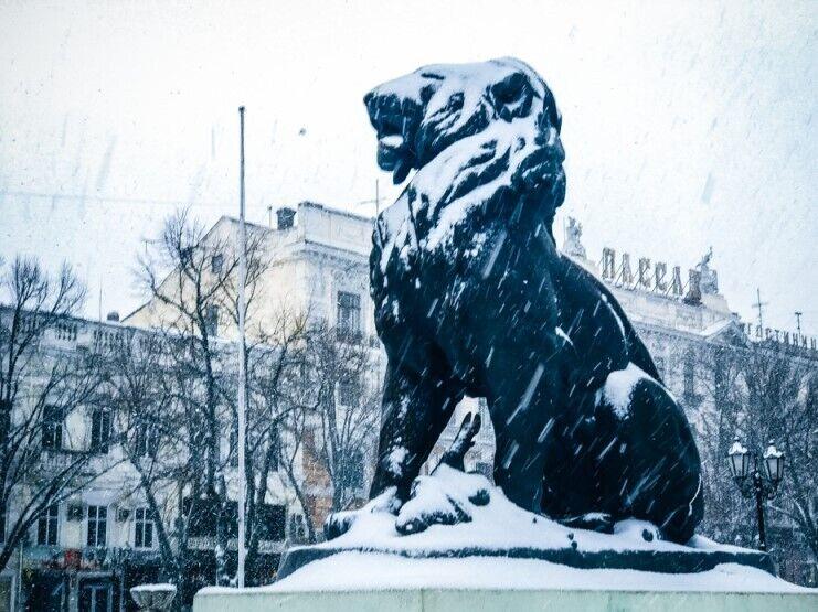Перший сніг в Одесі