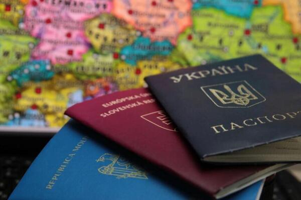 Двойное гражданство в Украине: Томенко объяснил, что задумал Зеленский