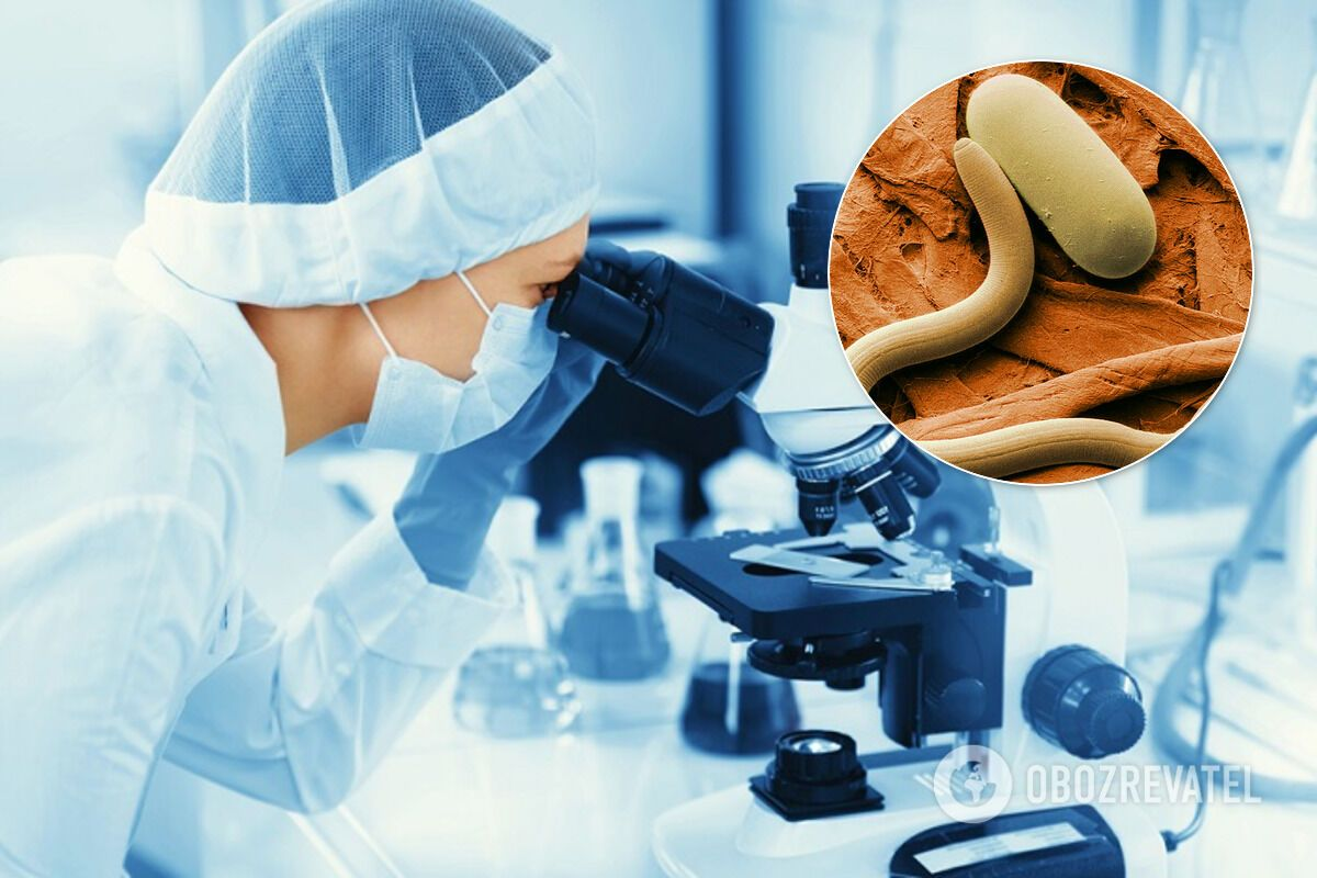 За словами вчених, завдяки нематодам можна визначити 15 видів онкології