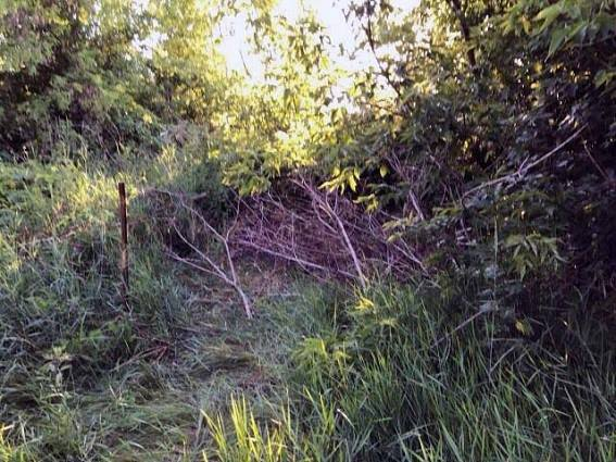 Місце, де знайшли тіла молодої пари