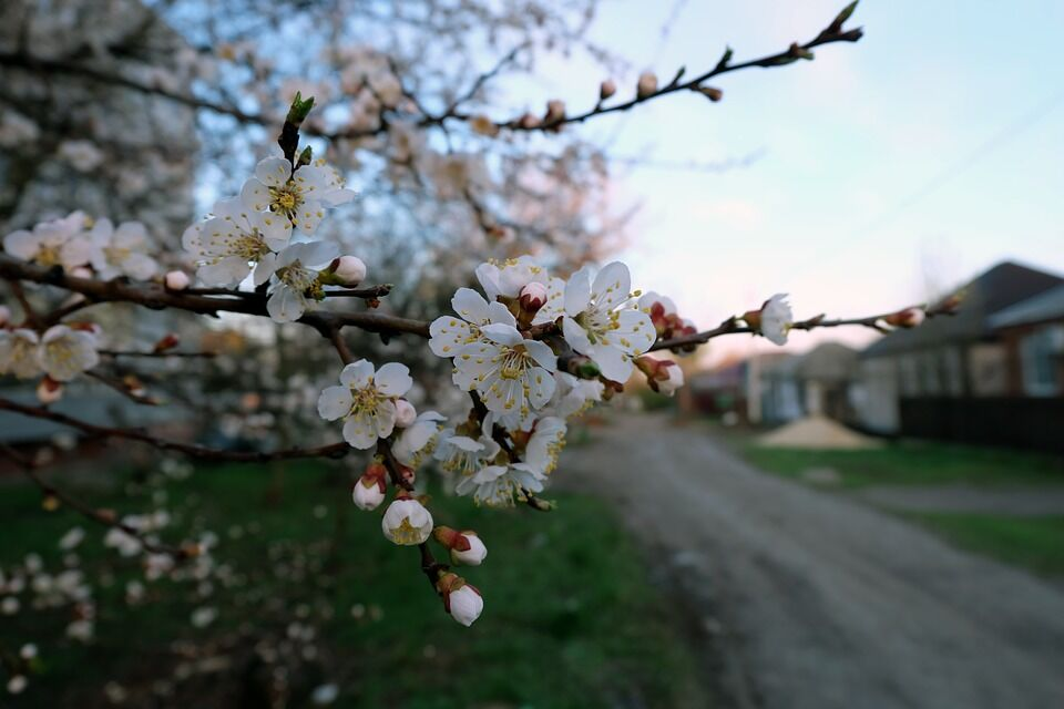 День весняного рівнодення 2020: що не можна робити