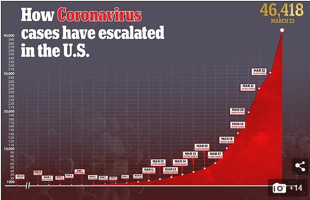 Динаміка поширення COVID-19 в США