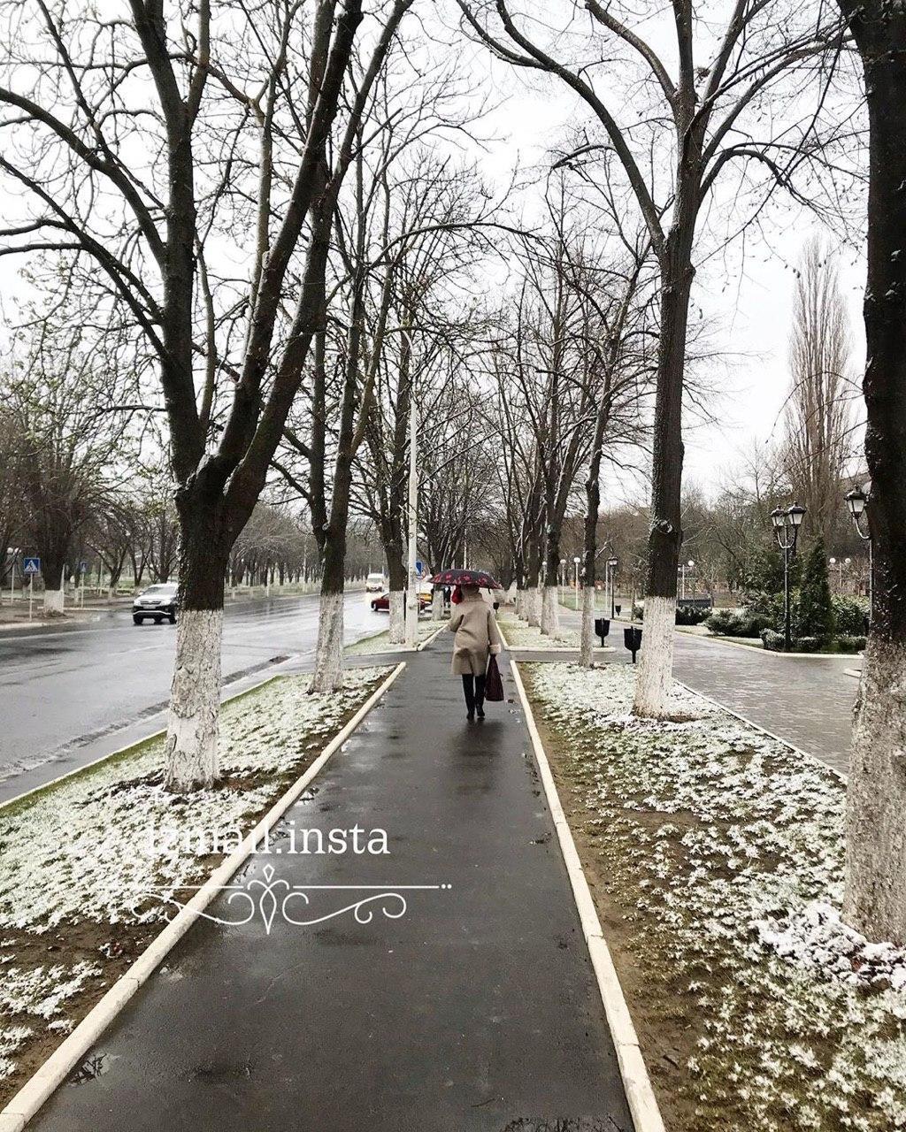 В Ізмаїлі Одеської області випав весняний сніг