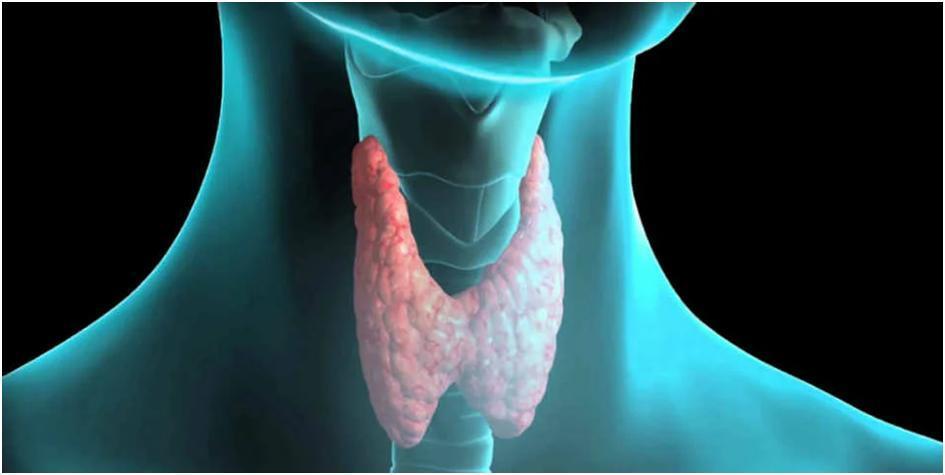 Вісім серйозних хвороб, які спричинюють кашель