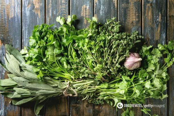 Первая зелень: как определить натуральную