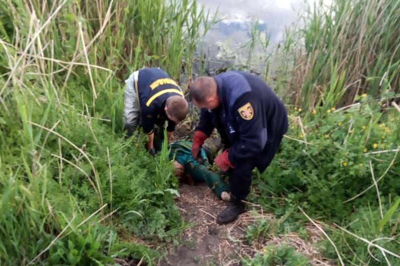 У водоймі знайшли тіло зниклої жінки