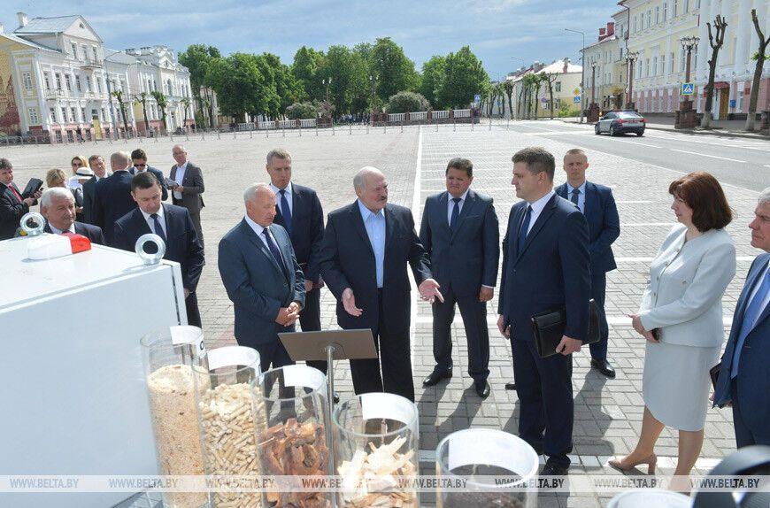 Лукашенко запропонував використовувати більше торфу і тирси