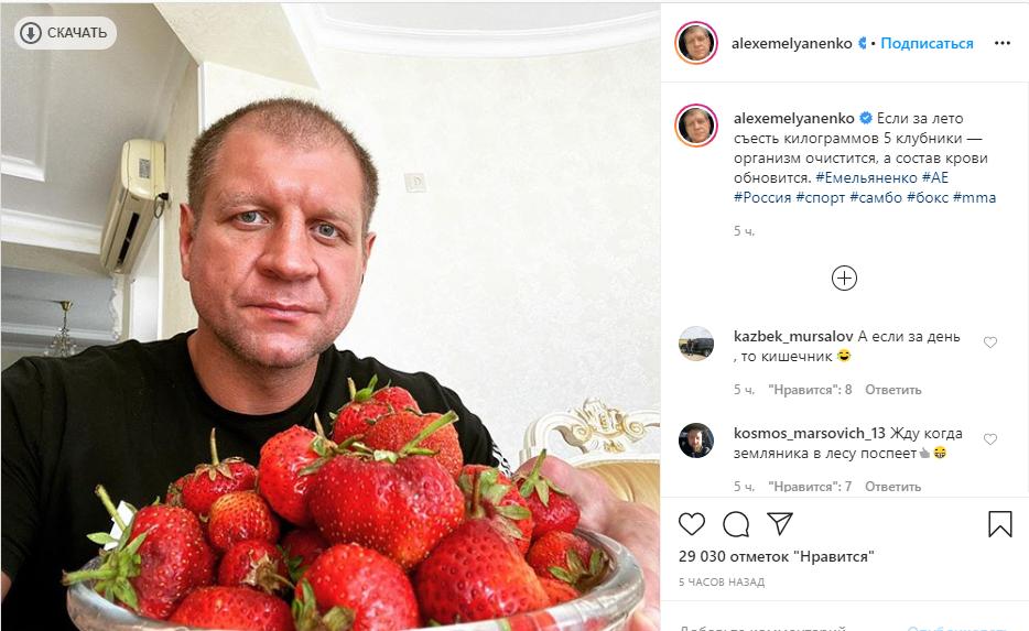 Емельяненко раскритиковали за совет есть клубнику