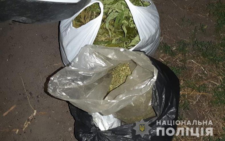 Мужчина во дворе дома вырастил 600 кустов конопли