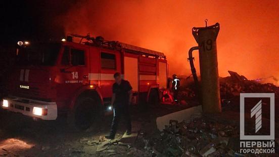 У Кривому Розі вогонь охопив масштабний сміттєвий полігон