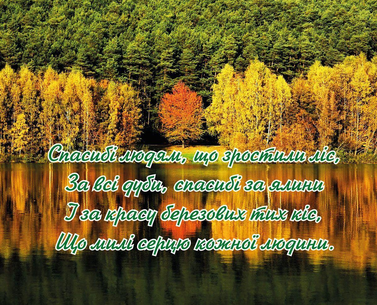 День працівника лісу: привітання і вірші