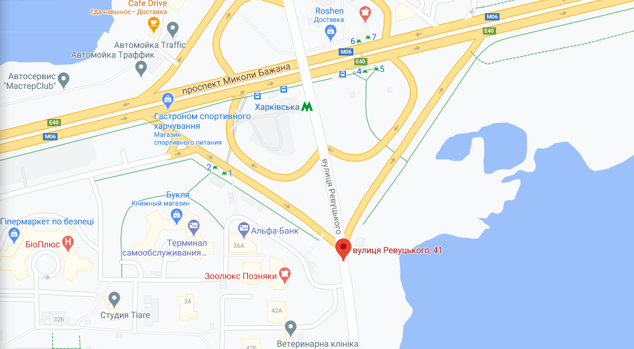 Инцидент произошел на улице Ревуцкого.