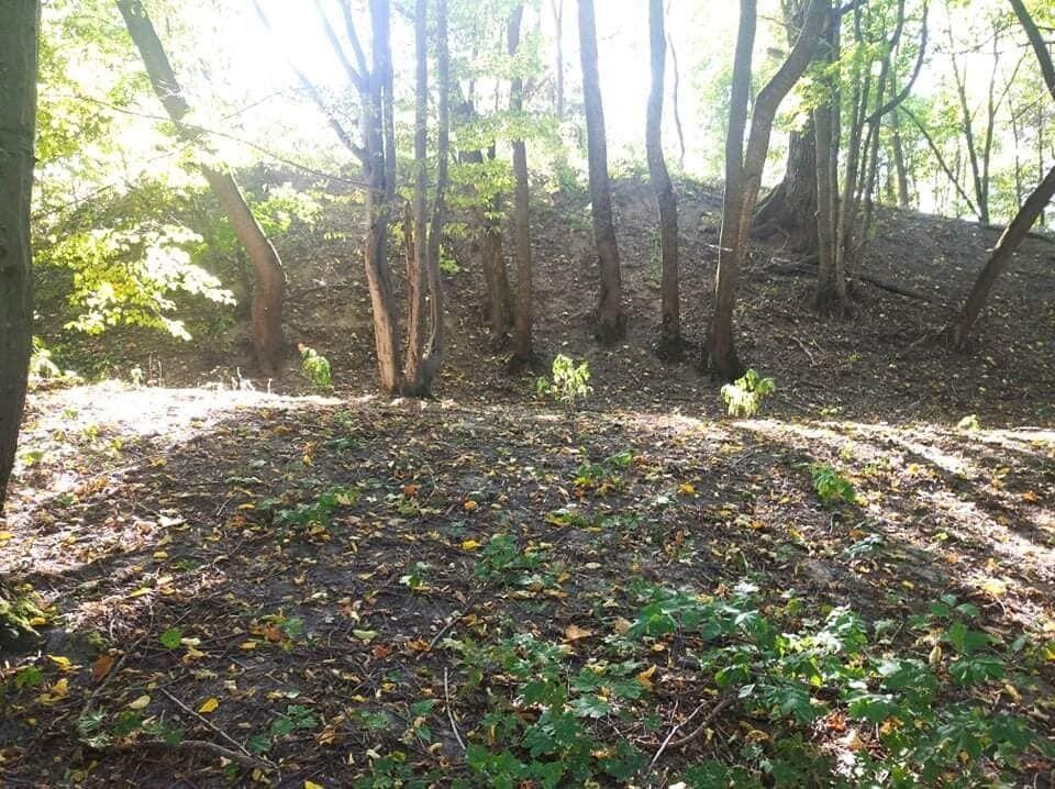 В поселке Городница на Житомирщине нашли остатки города Киевской Руси.