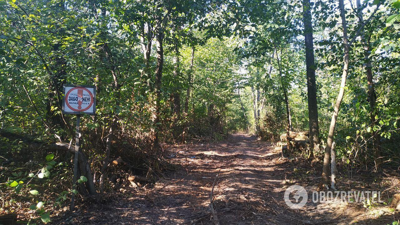 Рецидивіст близько півтора року жив у землянці в лісі в Фастівському районі