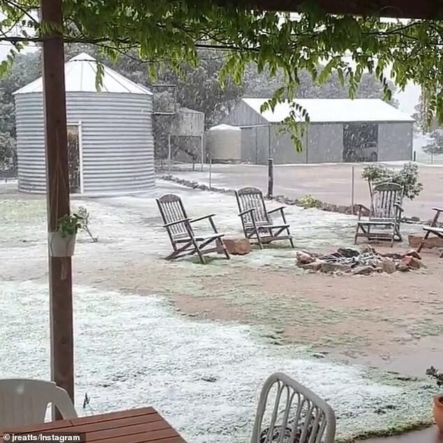 Задние дворы австралийцев замело.