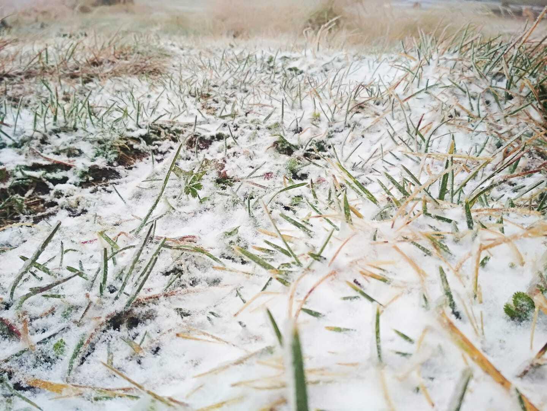 Сніг у Карпатах 27 вересня.