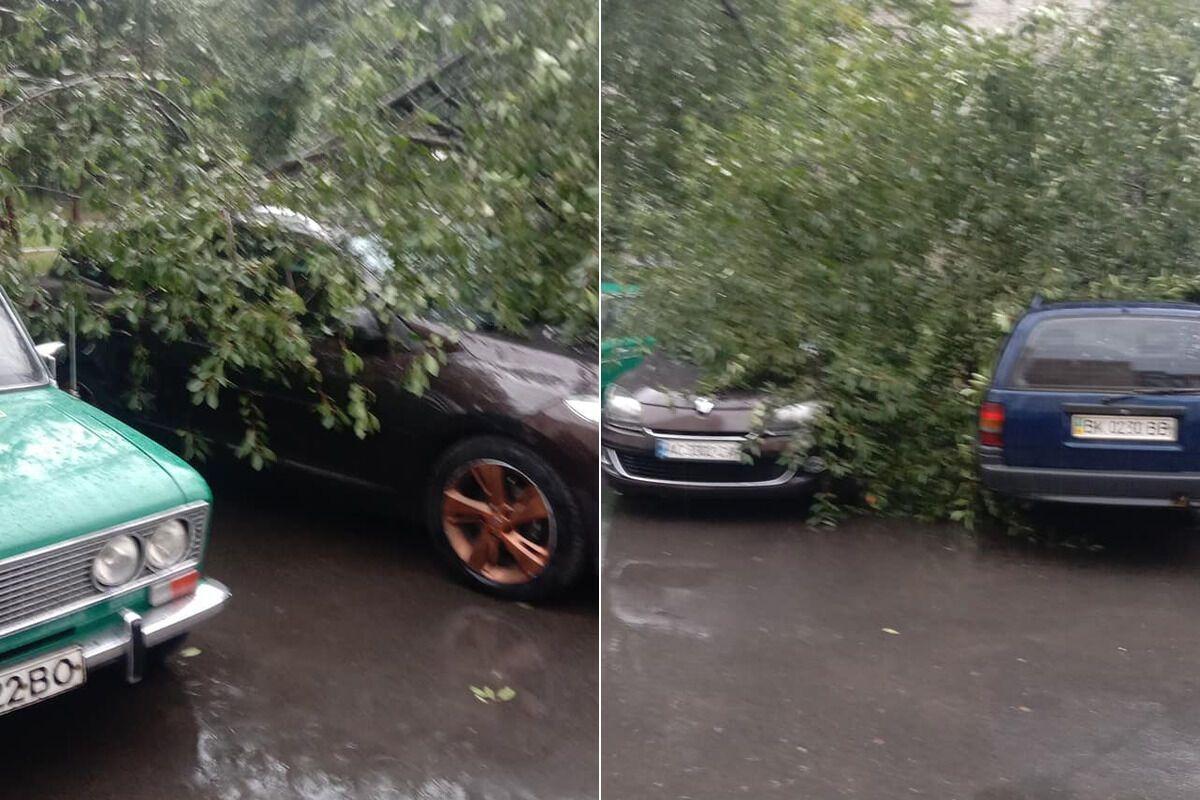 Негода знеструмила 26 населених пунктів в Івано-Франківській області.
