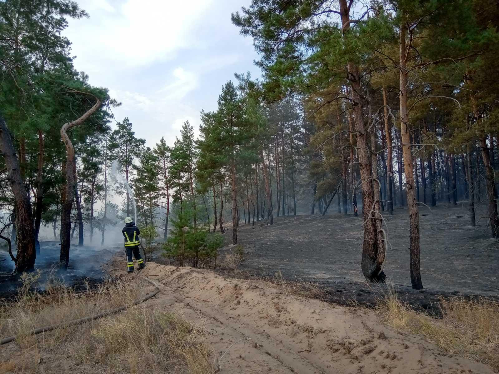Спасатели продолжают тушить пожар.