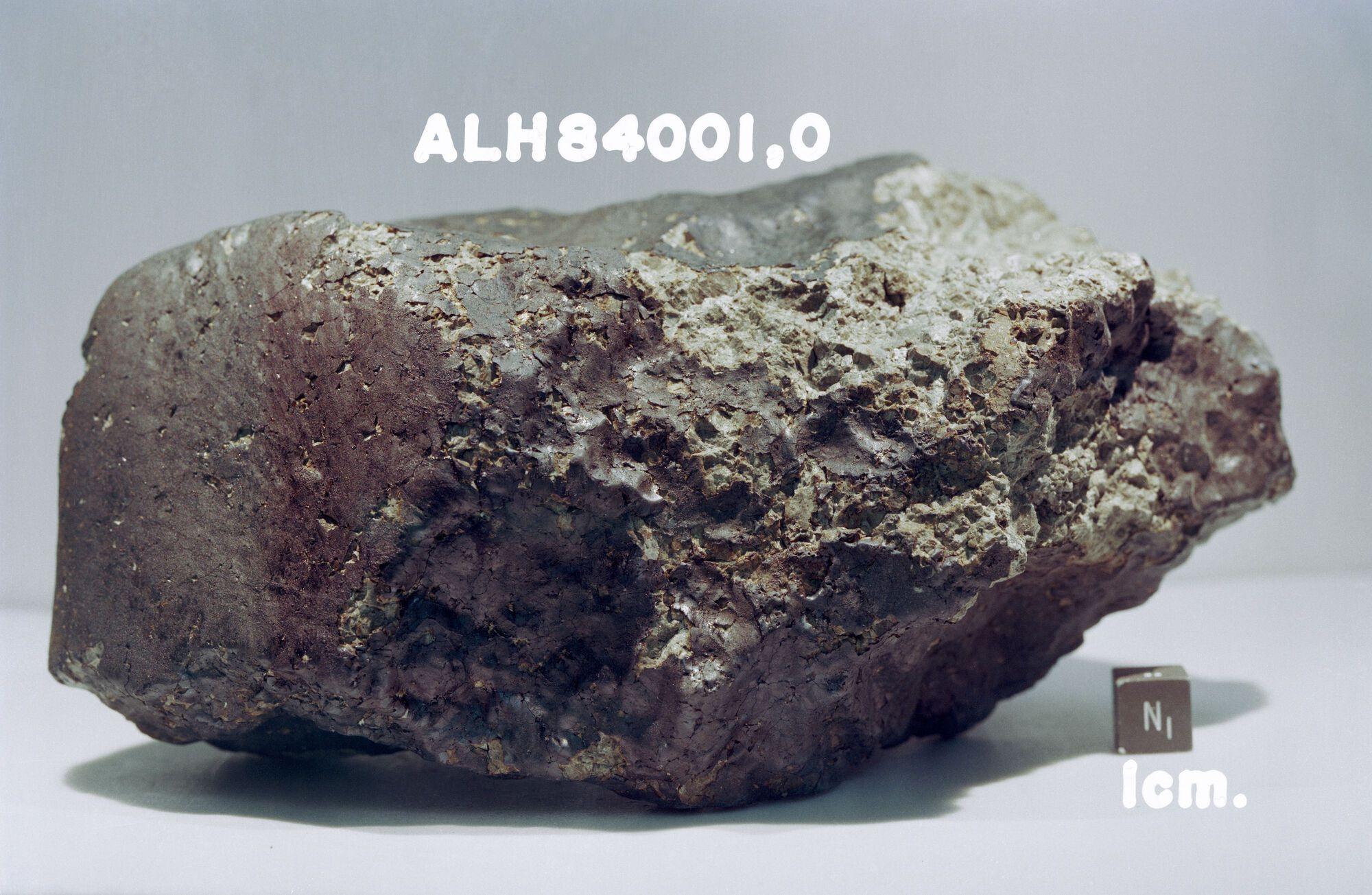 Метеорит Allan Hills 84001 был найден в 1984 году в горах Алан Хиллс в Антарктиде