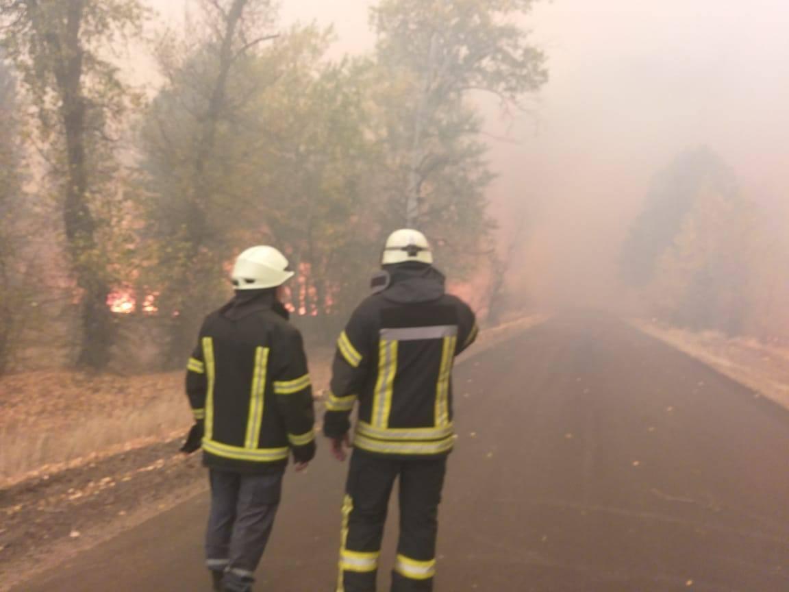К борьбе с огнем привлечены специалисты ГСЧС, личный состав лесной охраны, полицейские.