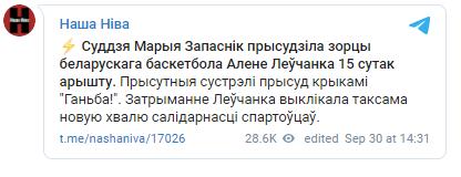 Олену Левченко кинули до в'язниці на 15 діб