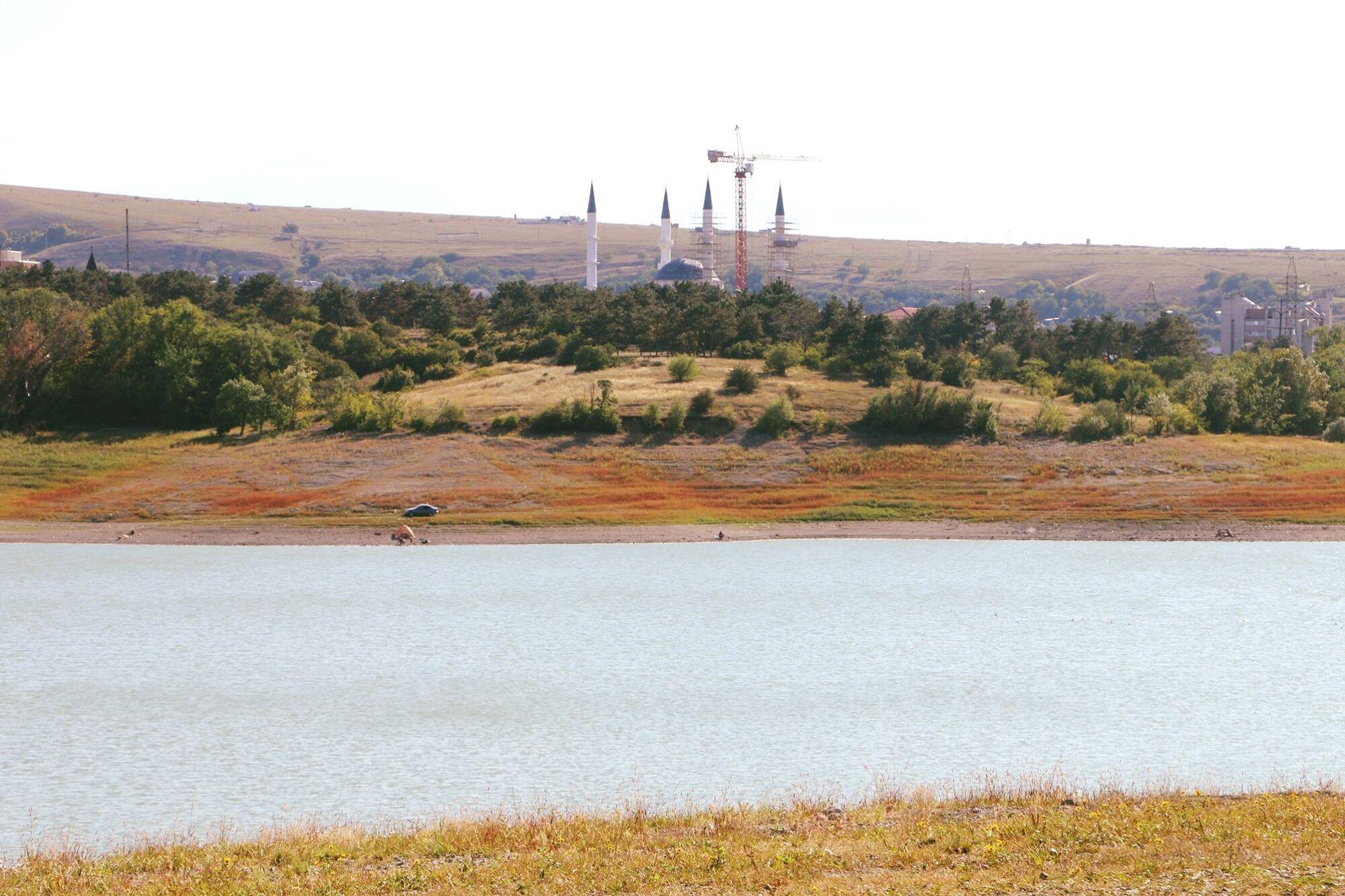 В окремих місцях Сімферопольського водосховища виросла трава