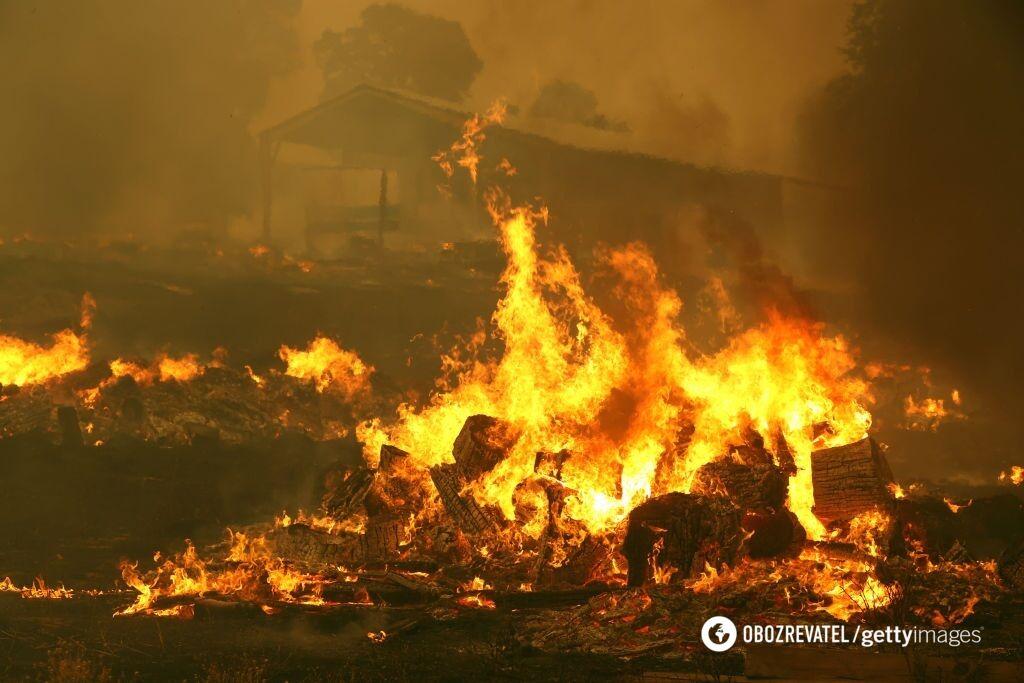 К 7 сентября площадь пожаров в Калифорнии достигла почти 4 тыс. гектаров