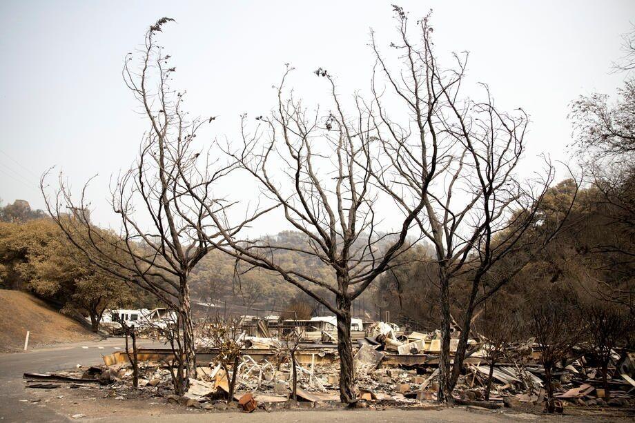 Последствия разрушительной огненной стихии