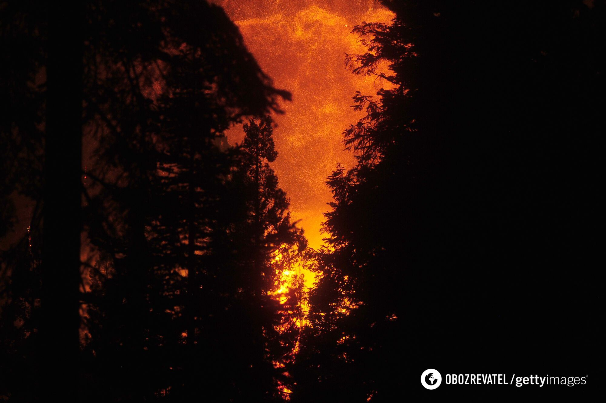 Вид на место пожара возле озера Шейвер в округе Фресно (штат Калифорния, США)