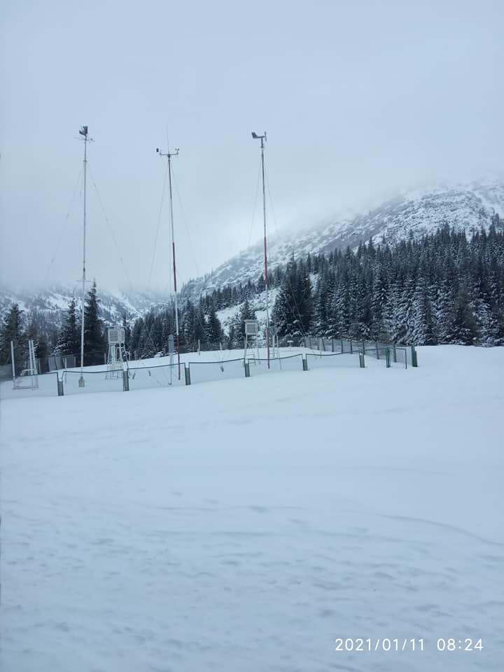 Карпати завалило снігом