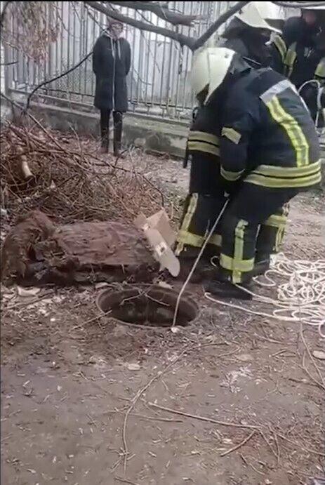 Тело умершего спасатели передали полиции.