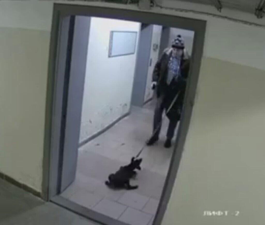 После насилия, мужчина выбросил щенка на улицу.