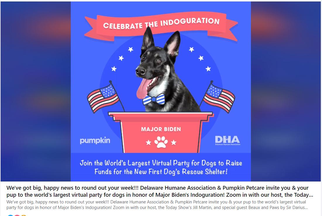 Запрошення на віртуальну вечірку на честь собаки Байдена