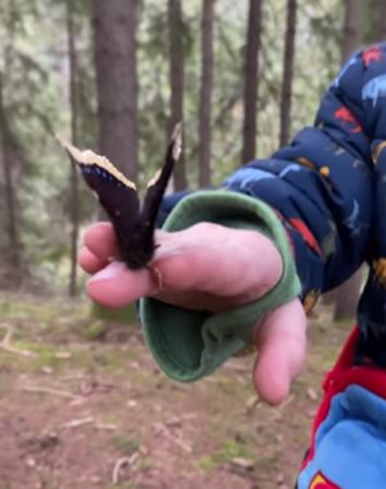 Бабочка на руке у ребенка