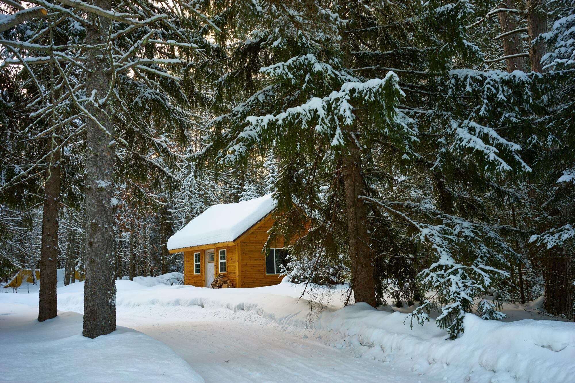 Иней на деревьях 27 января – к приближению тепла