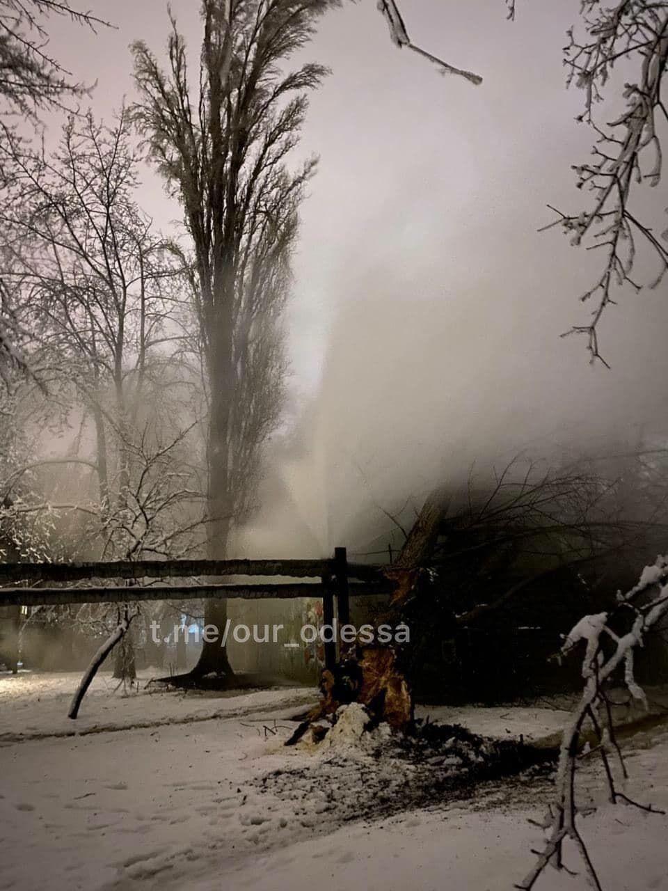 Дерево из-за снега упало на теплотрассу