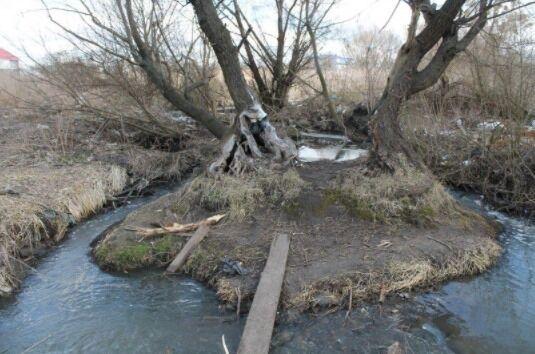 Понад 50 км бруд зі смуги Жулян розноситься по Києву та області