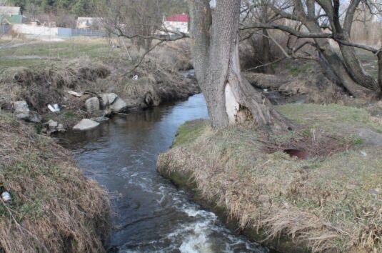 Забруднена річка Нивка впадає в Дніпро