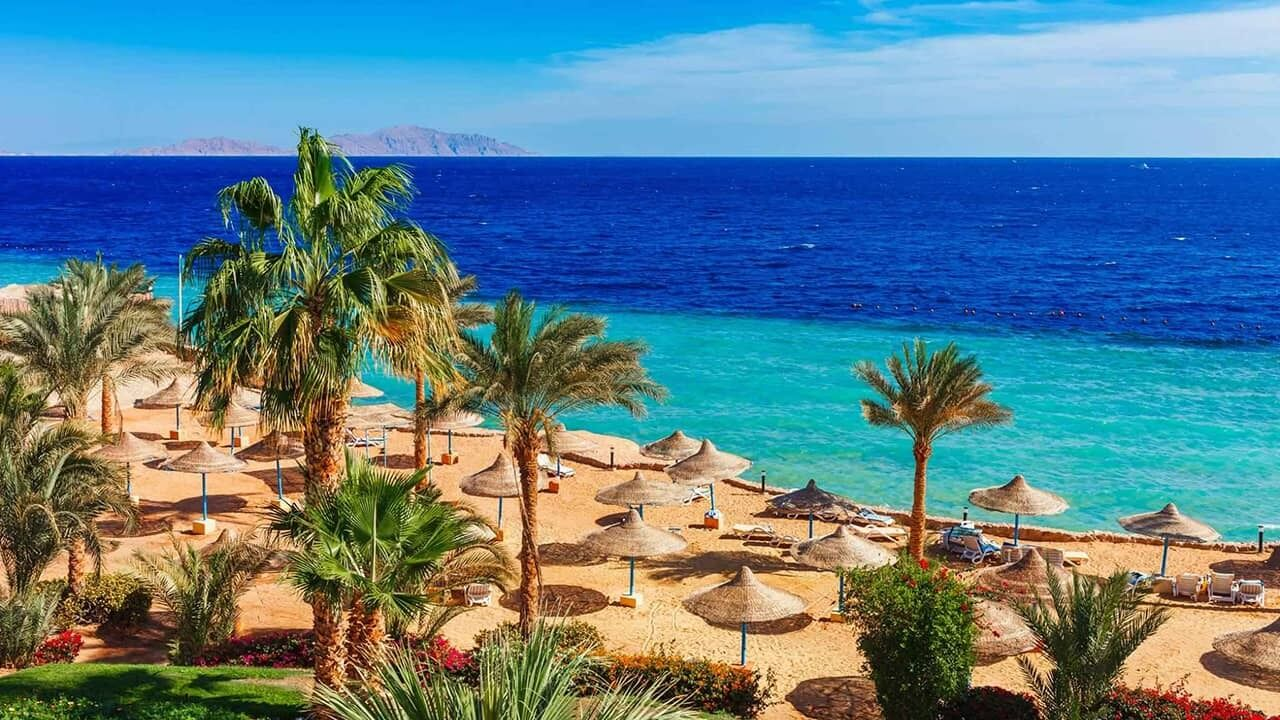Куда лететь на отдых зимой: Египет.