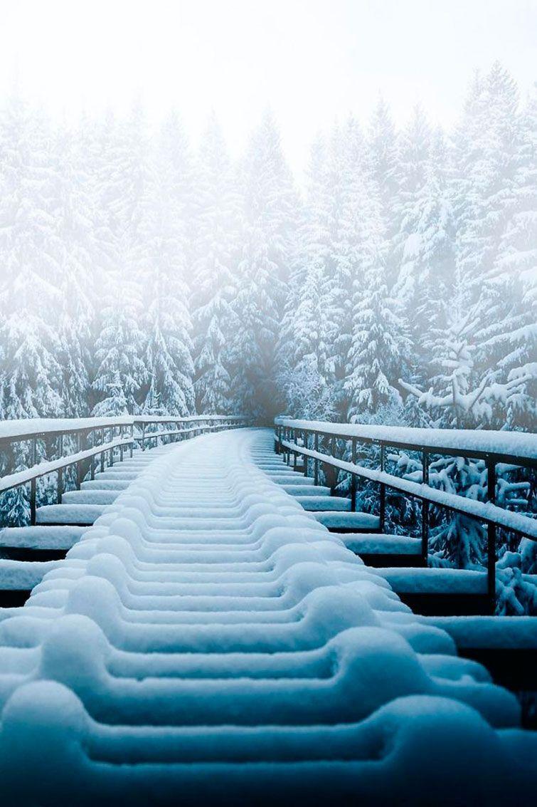 Снегопад на эстакаде