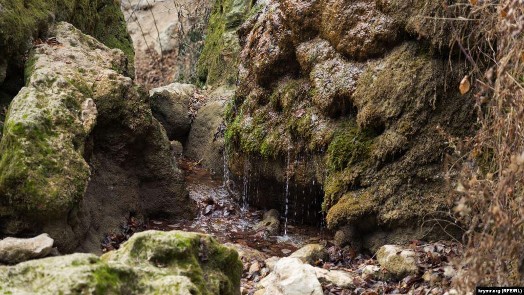 Последствия засухи на Крымском полуострове