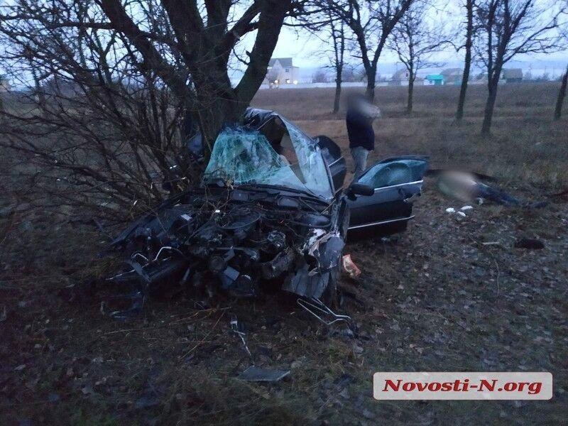 Авто врізалося в дерево